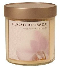 Sugar Blossom Fragranced Soy Candle $5.00